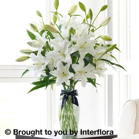 luxury white oriental vase